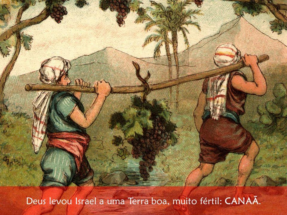 Deus levou Israel a uma Terra boa, muito fértil: CANAÃ.