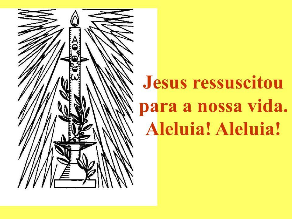 Jesus ressuscitou para a nossa vida. Aleluia!