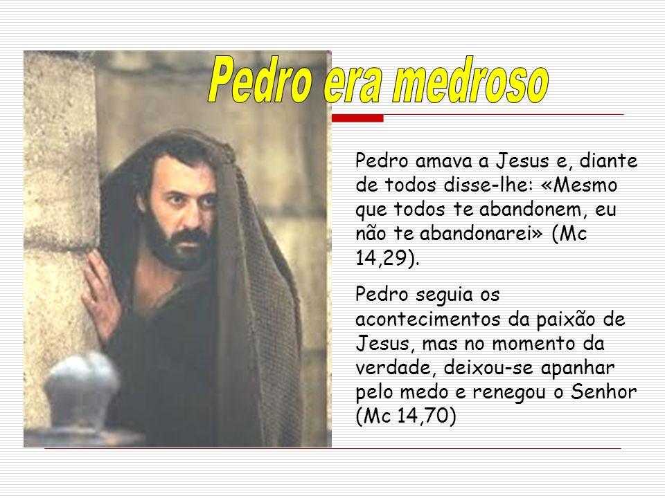 Pedro amava a Jesus e, diante de todos disse-lhe: «Mesmo que todos te abandonem, eu não te abandonarei» (Mc 14,29). Pedro seguia os acontecimentos da