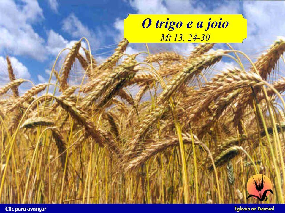 Iglesia en Daimiel O trigo e o joio Conheces o joio? É parecido com o trigo! Olha esta imagem Clic para avançar