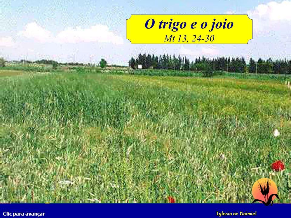 E os servos do pai da família, diseram- lhe: Senhor, não semeaste boa semente no teu campo.