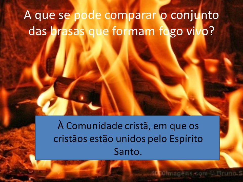 A que se pode comparar o conjunto das brasas que formam fogo vivo? À Comunidade cristã, em que os cristãos estão unidos pelo Espírito Santo.