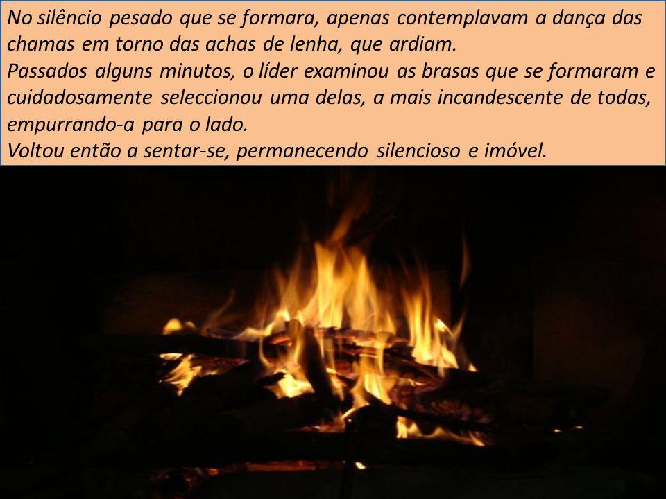 No silêncio pesado que se formara, apenas contemplavam a dança das chamas em torno das achas de lenha, que ardiam. Passados alguns minutos, o líder ex