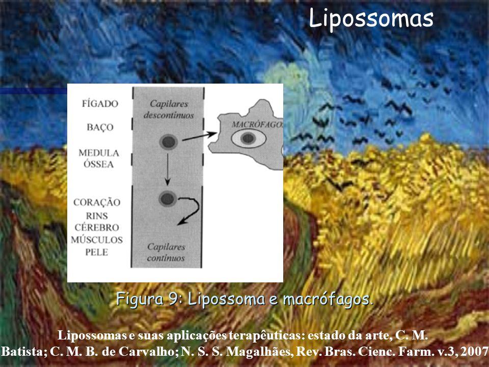 Lipossomas e suas aplicações terapêuticas: estado da arte, C. M. Batista; C. M. B. de Carvalho; N. S. S. Magalhães, Rev. Bras. Cienc. Farm. v.3, 2007