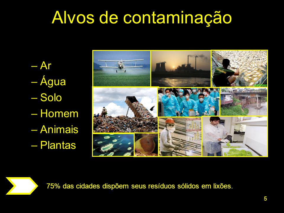 5 –Ar –Água –Solo –Homem –Animais –Plantas Alvos de contaminação 75% das cidades dispõem seus resíduos sólidos em lixões.