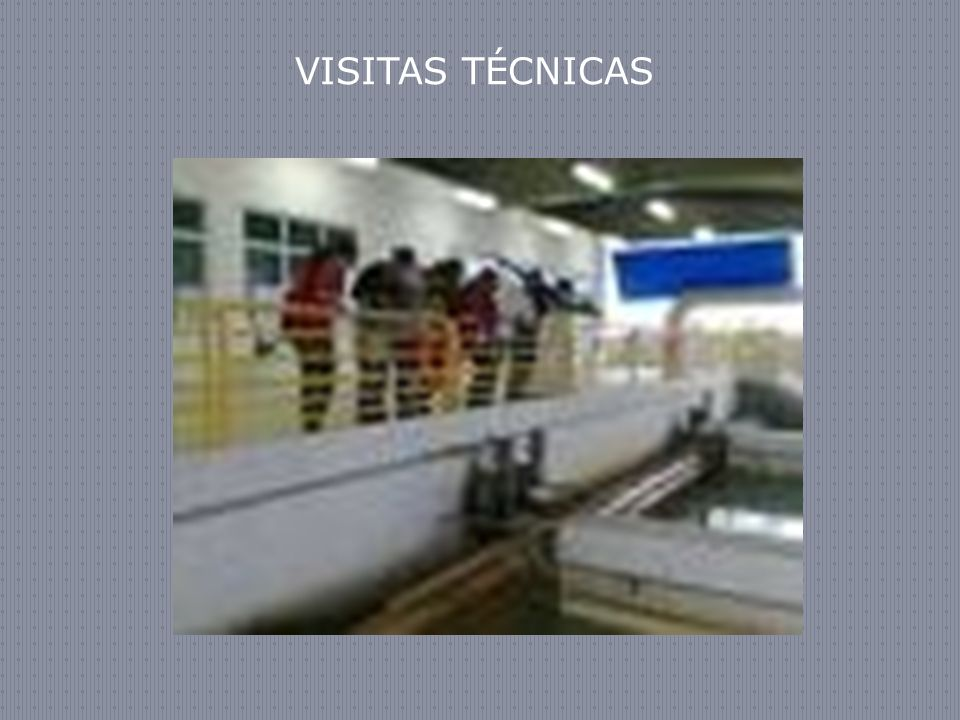VISITAS TÉCNICAS