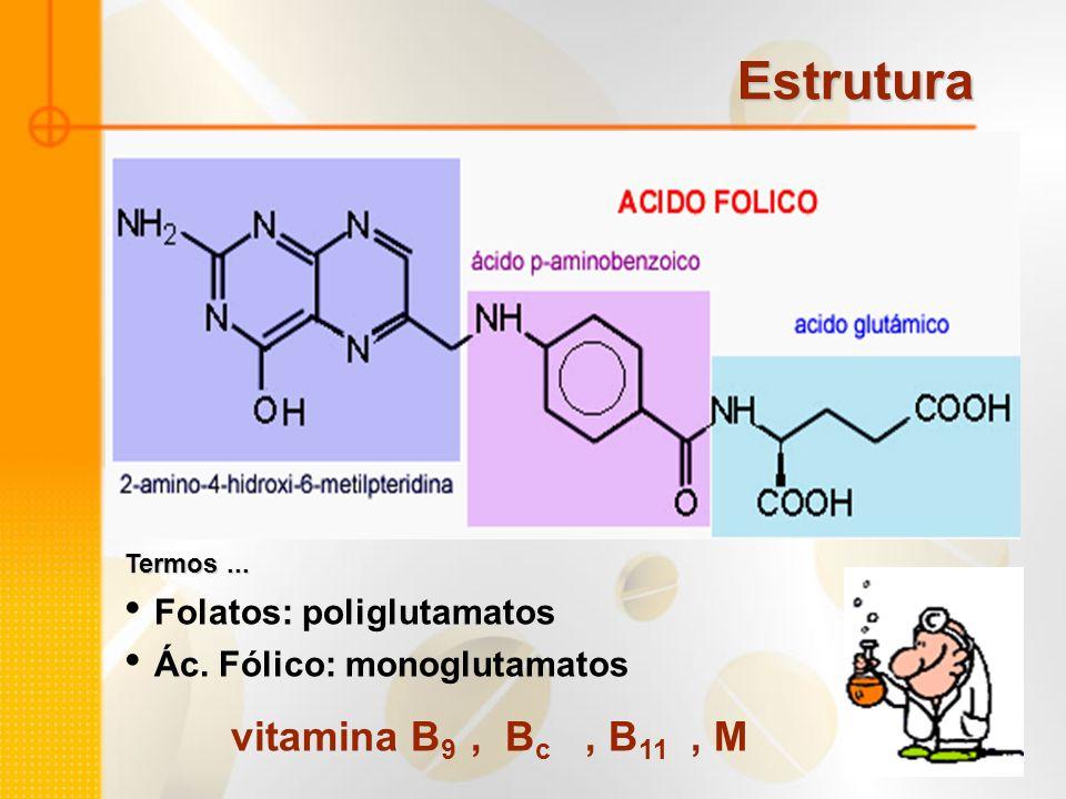 Folatos: poliglutamatos Ác. Fólico: monoglutamatos vitamina B 9, B c, B 11, M Estrutura Termos...