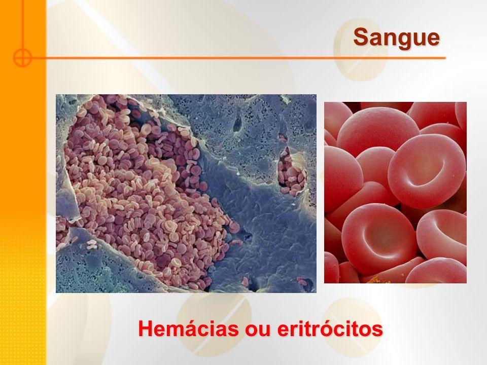 Sangue Hemácias ou eritrócitos