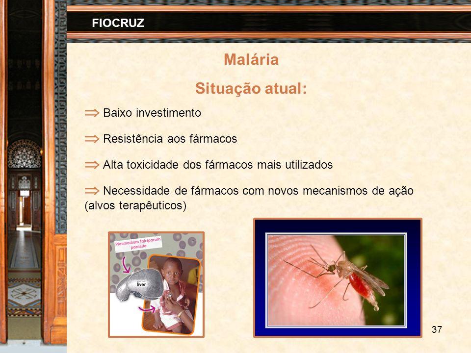 37 FIOCRUZ Malária Situação atual: Baixo investimento Resistência aos fármacos Alta toxicidade dos fármacos mais utilizados Necessidade de fármacos co