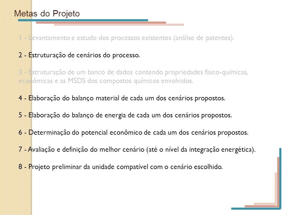 Metas do Projeto 1 - Levantamento e estudo dos processos existentes (análise de patentes). 2 - Estruturação de cenários do processo. 3 - Estruturação