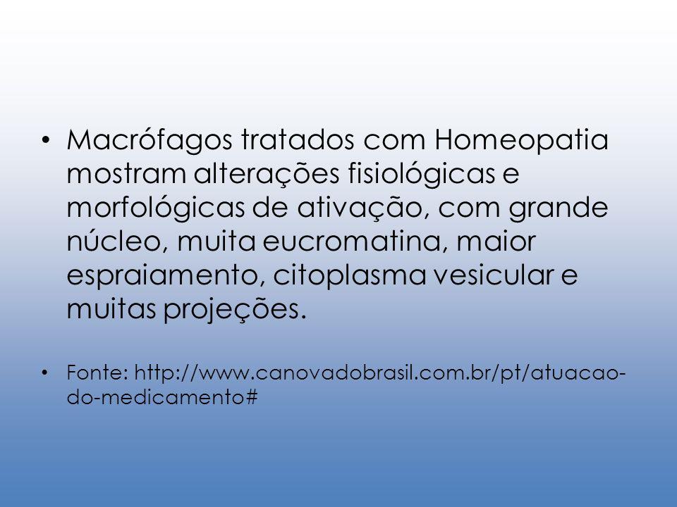 Macrófagos tratados com Homeopatia mostram alterações fisiológicas e morfológicas de ativação, com grande núcleo, muita eucromatina, maior espraiament