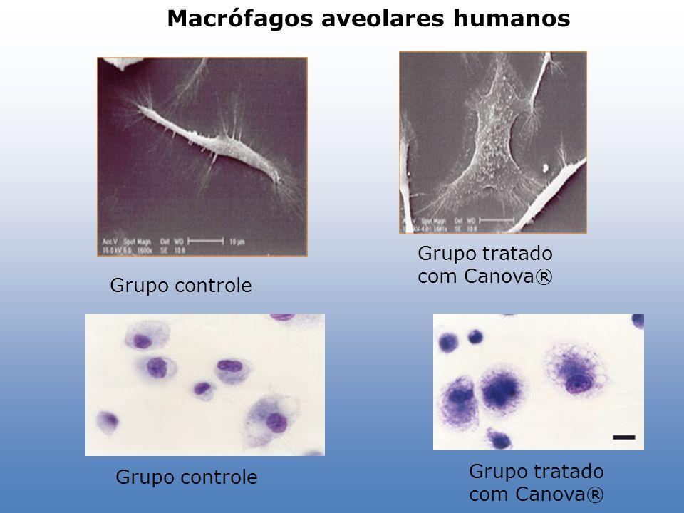 Macrófagos aveolares humanos Grupo tratado com Canova® Grupo controle