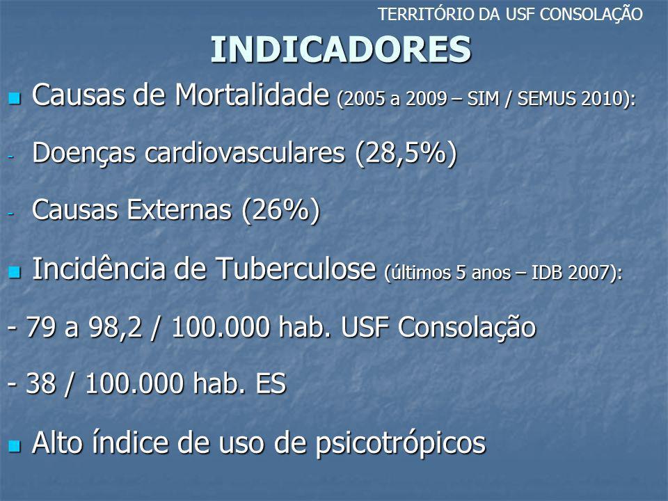 INDICADORES TERRITÓRIO DA USF CONSOLAÇÃO Causas de Mortalidade (2005 a 2009 – SIM / SEMUS 2010): Causas de Mortalidade (2005 a 2009 – SIM / SEMUS 2010