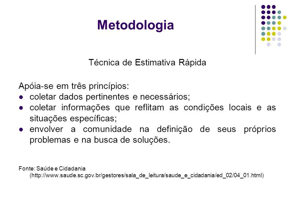Metodologia Técnica de Estimativa Rápida Apóia-se em três princípios: coletar dados pertinentes e necessários; coletar informações que reflitam as con