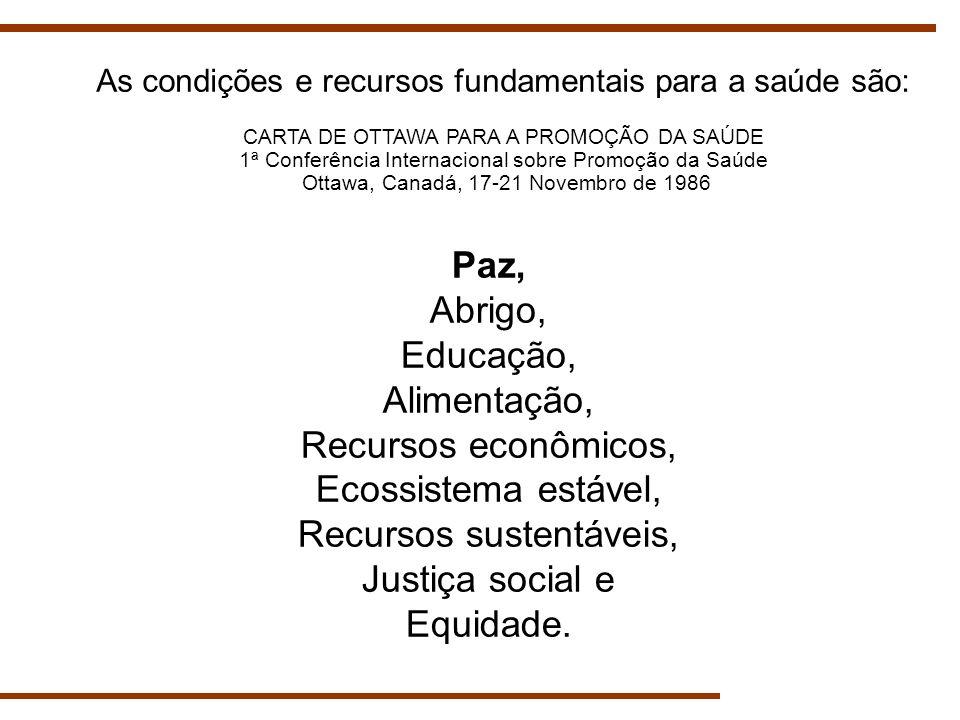 Paz, Abrigo, Educação, Alimentação, Recursos econômicos, Ecossistema estável, Recursos sustentáveis, Justiça social e Equidade. As condições e recurso
