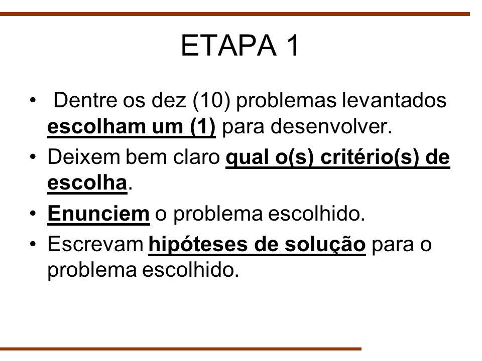 ETAPA 1 Dentre os dez (10) problemas levantados escolham um (1) para desenvolver. Deixem bem claro qual o(s) critério(s) de escolha. Enunciem o proble