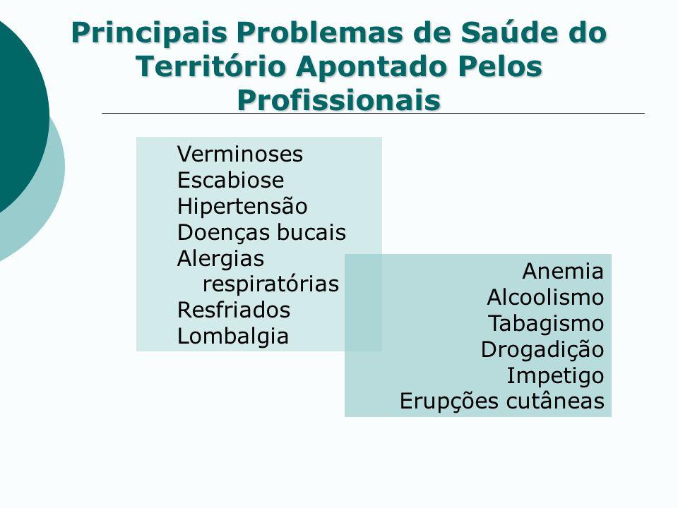Principais Problemas de Saúde do Território Apontado Pelos Profissionais Verminoses Escabiose Hipertensão Doenças bucais Alergias respiratórias Resfri
