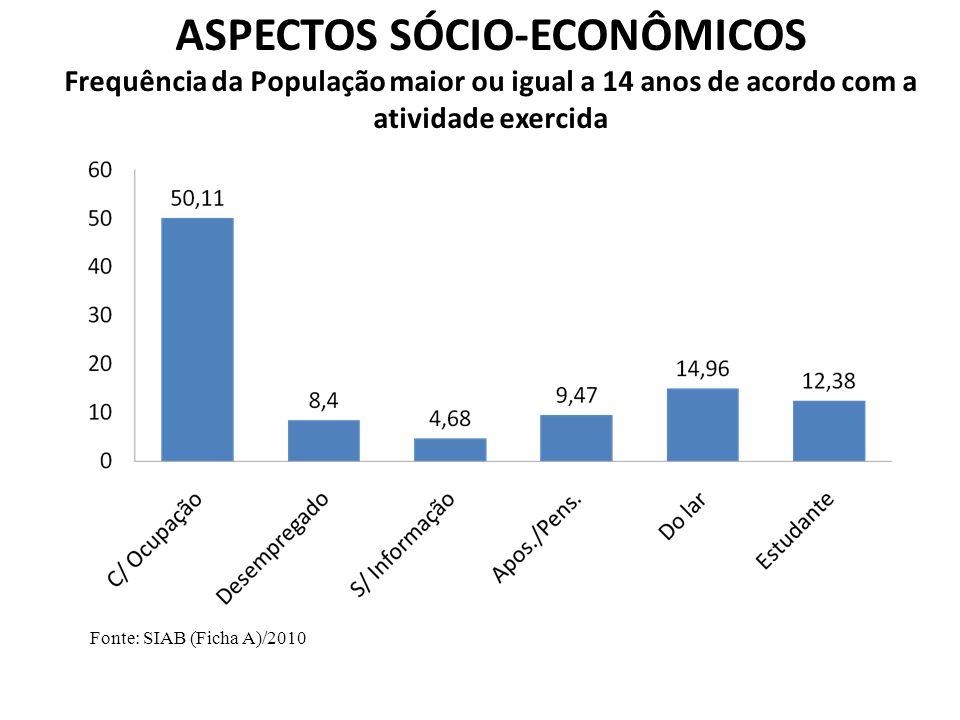 Fonte: SIAB (Ficha A)/2010 ASPECTOS SÓCIO-ECONÔMICOS Frequência da População maior ou igual a 14 anos de acordo com a atividade exercida