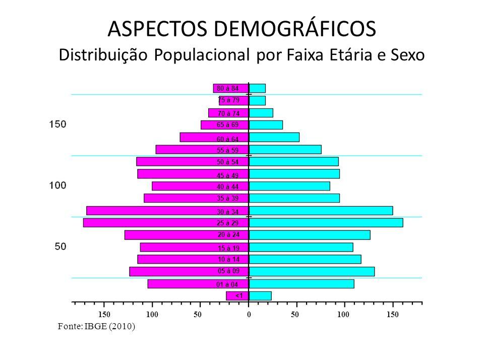 ASPECTOS DEMOGRÁFICOS Distribuição Populacional por Faixa Etária e Sexo Fonte: IBGE (2010) <1 01 à 04 05 à 09 10 à 14 15 à 19 20 à 24 25 à 29 30 à 34