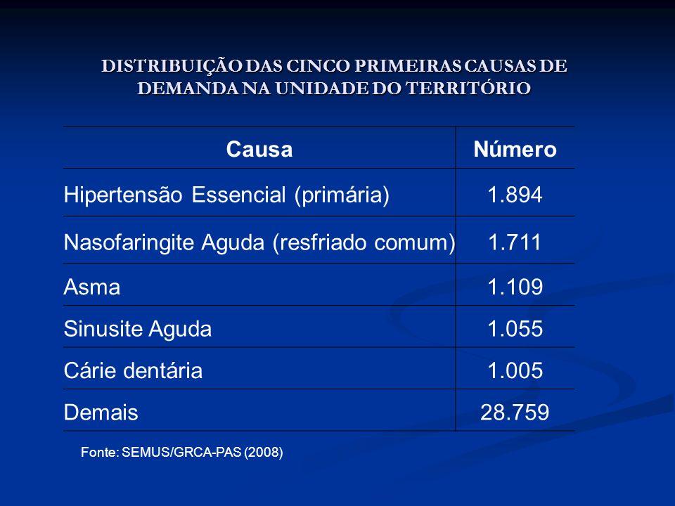 DISTRIBUIÇÃO DAS CINCO PRIMEIRAS CAUSAS DE DEMANDA NA UNIDADE DO TERRITÓRIO CausaNúmero Hipertensão Essencial (primária)1.894 Nasofaringite Aguda (res
