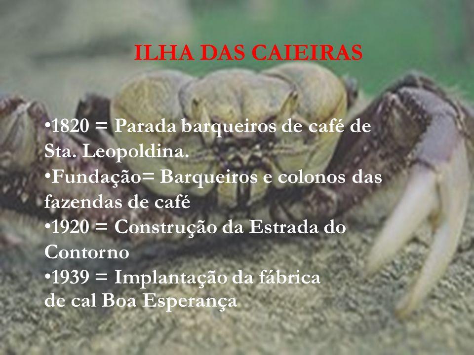 Mangues que nas marés altas conferia aspecto insular Caieiras significa forno onde se calcina a pedra calcária Estação Vitória- Minas Atividades econômicas: a coleta de moluscos e mariscos, a pesca e a produção de cal.
