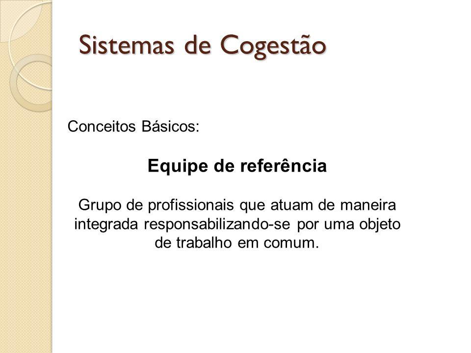 Sistemas de Cogestão Conceitos Básicos: Equipe de referência Grupo de profissionais que atuam de maneira integrada responsabilizando-se por uma objeto