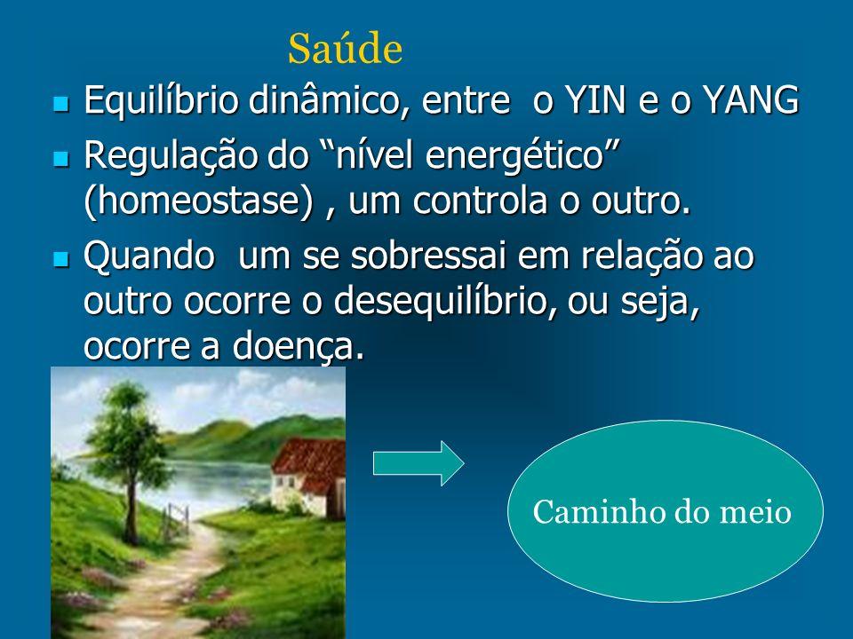 Equilíbrio dinâmico, entre o YIN e o YANG Equilíbrio dinâmico, entre o YIN e o YANG Regulação do nível energético (homeostase), um controla o outro. R