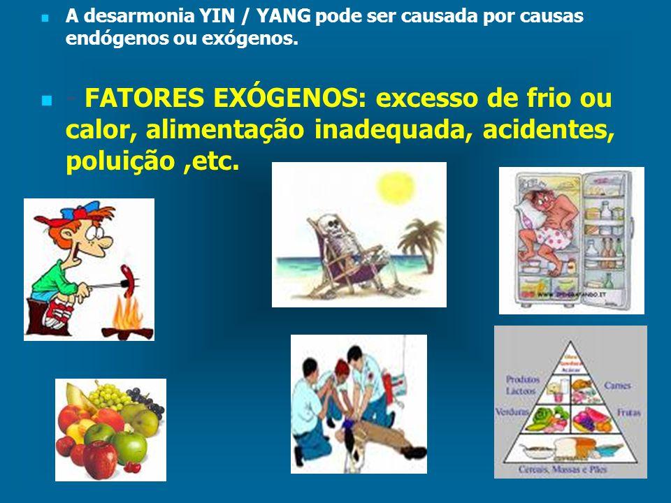 A desarmonia YIN / YANG pode ser causada por causas endógenos ou exógenos. - FATORES EXÓGENOS: excesso de frio ou calor, alimentação inadequada, acide