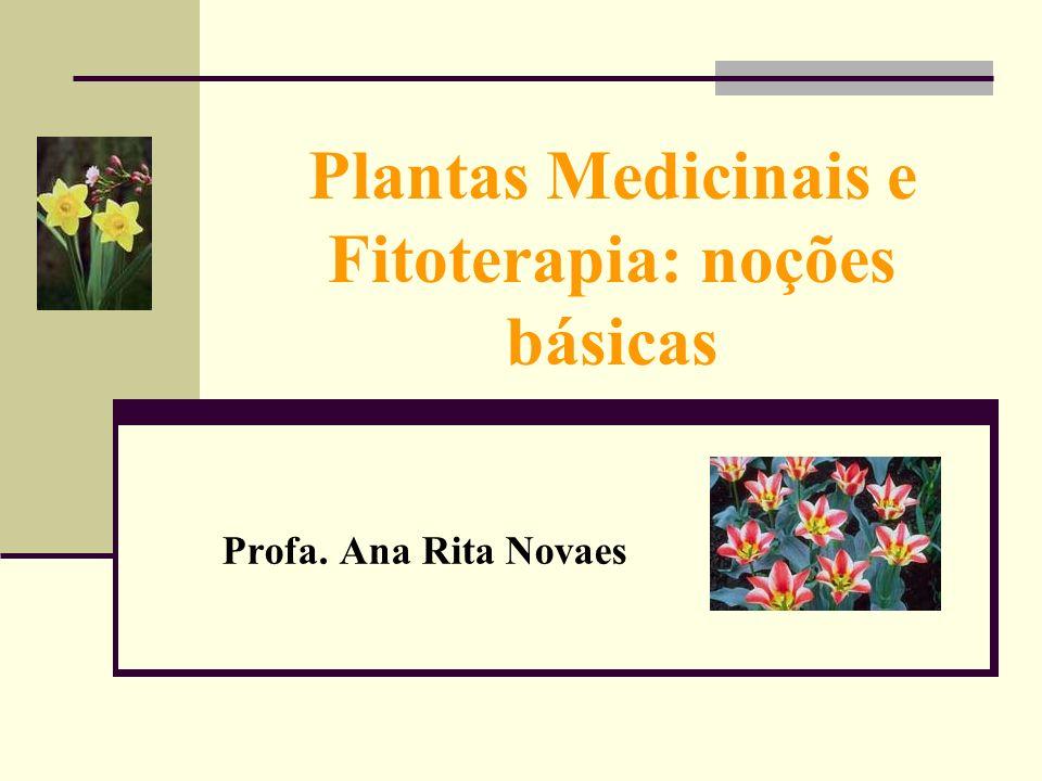Plantas Medicinais e Fitoterapia: noções básicas Profa. Ana Rita Novaes