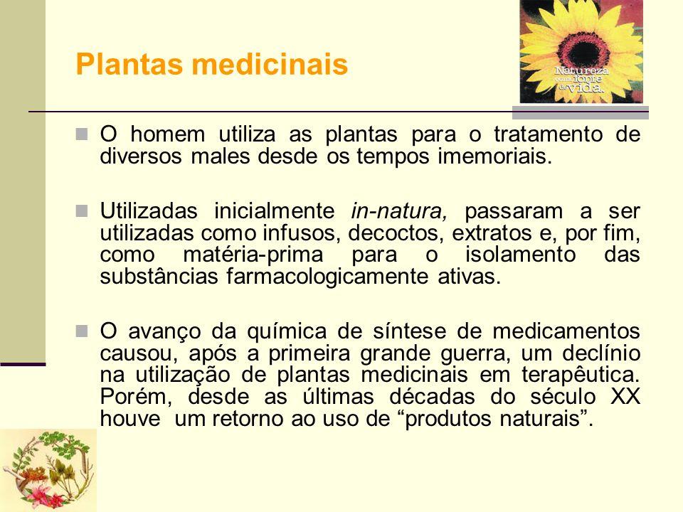 Plantas medicinais O homem utiliza as plantas para o tratamento de diversos males desde os tempos imemoriais. Utilizadas inicialmente in-natura, passa
