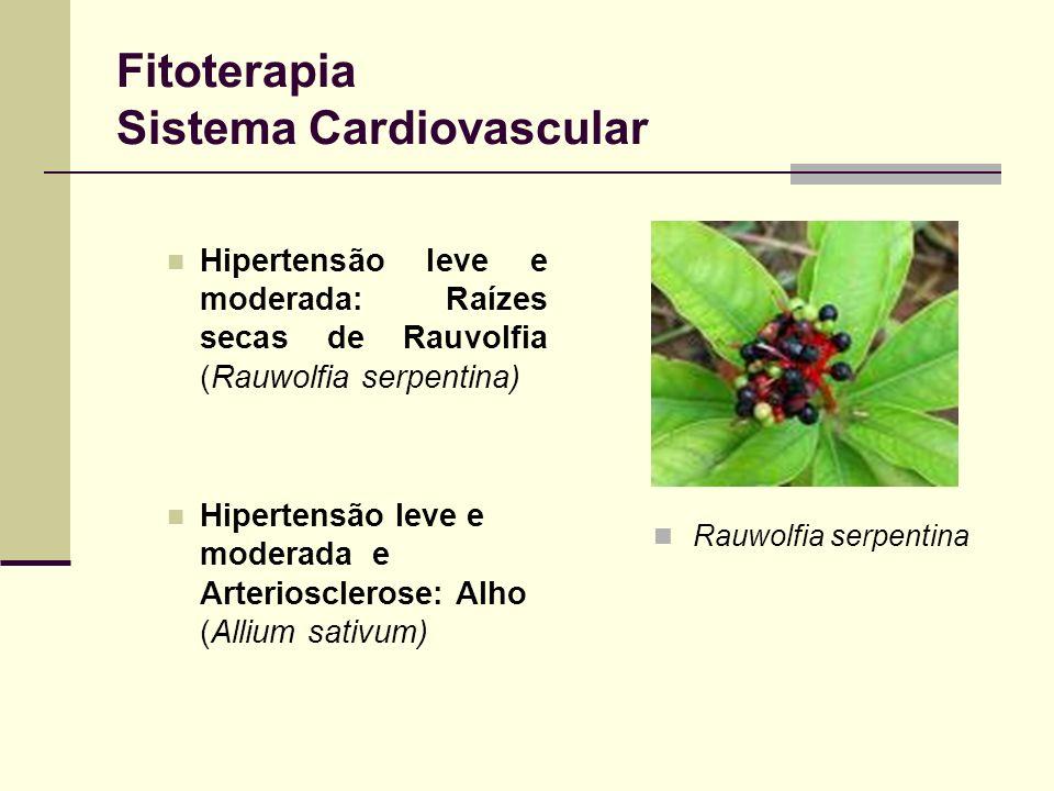 Fitoterapia Sistema Cardiovascular Hipertensão leve e moderada: Raízes secas de Rauvolfia (Rauwolfia serpentina) Hipertensão leve e moderada e Arterio