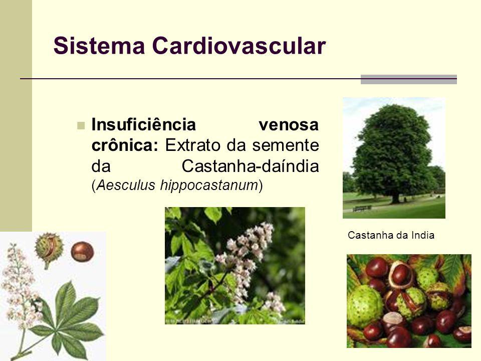 Sistema Cardiovascular Insuficiência venosa crônica: Extrato da semente da Castanha-daíndia (Aesculus hippocastanum) Castanha da India