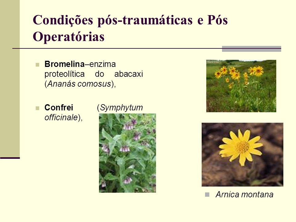 Condições pós-traumáticas e Pós Operatórias Bromelina–enzima proteolítica do abacaxi (Ananás comosus), Confrei (Symphytum officinale), Arnica montana