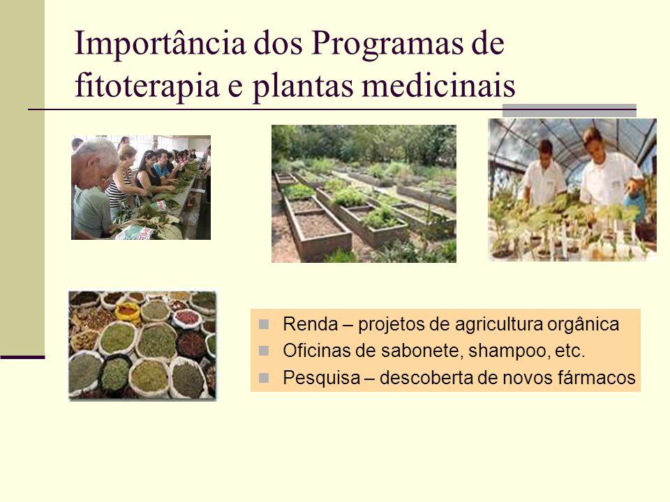 Importância dos Programas de fitoterapia e plantas medicinais Renda – projetos de agricultura orgânica Oficinas de sabonete, shampoo, etc. Pesquisa –