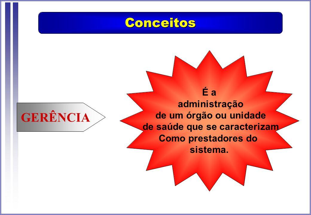 GERÊNCIA É a administração de um órgão ou unidade de saúde que se caracterizam Como prestadores do sistema. Conceitos