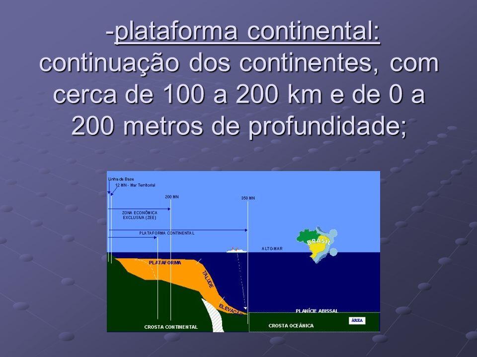 -plataforma continental: continuação dos continentes, com cerca de 100 a 200 km e de 0 a 200 metros de profundidade; -plataforma continental: continua