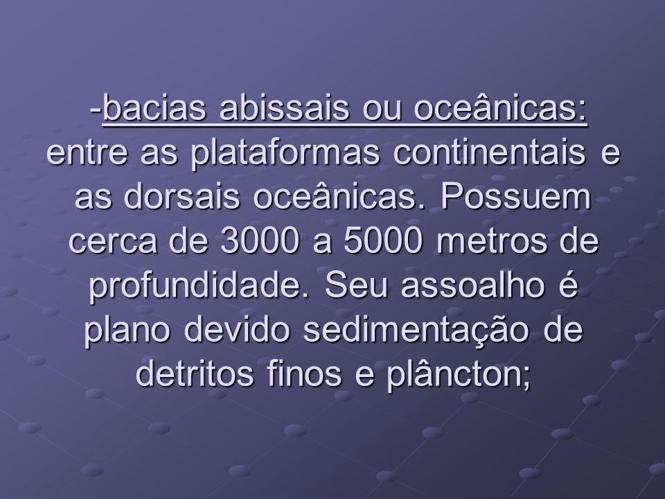-bacias abissais ou oceânicas: entre as plataformas continentais e as dorsais oceânicas. Possuem cerca de 3000 a 5000 metros de profundidade. Seu asso