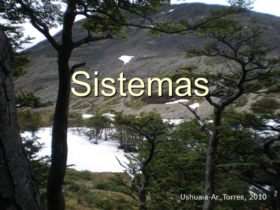 Sistemas Ushuaia-Ar.,Torres, 2010
