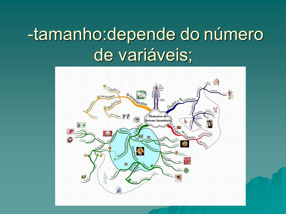 -tamanho:depende do número de variáveis; -tamanho:depende do número de variáveis;