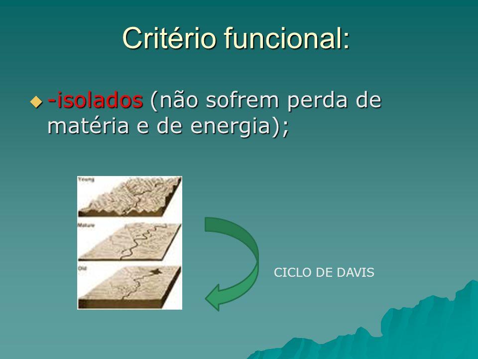Critério funcional: -isolados (não sofrem perda de matéria e de energia); -isolados (não sofrem perda de matéria e de energia); CICLO DE DAVIS