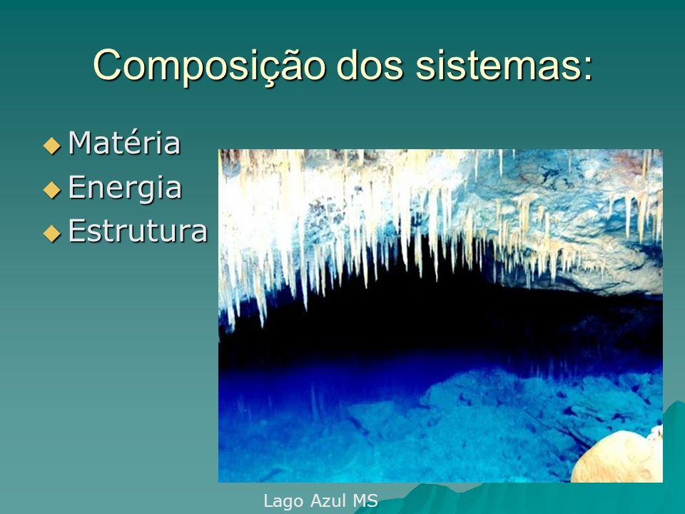 Composição dos sistemas: Matéria Matéria Energia Energia Estrutura Estrutura Lago Azul MS