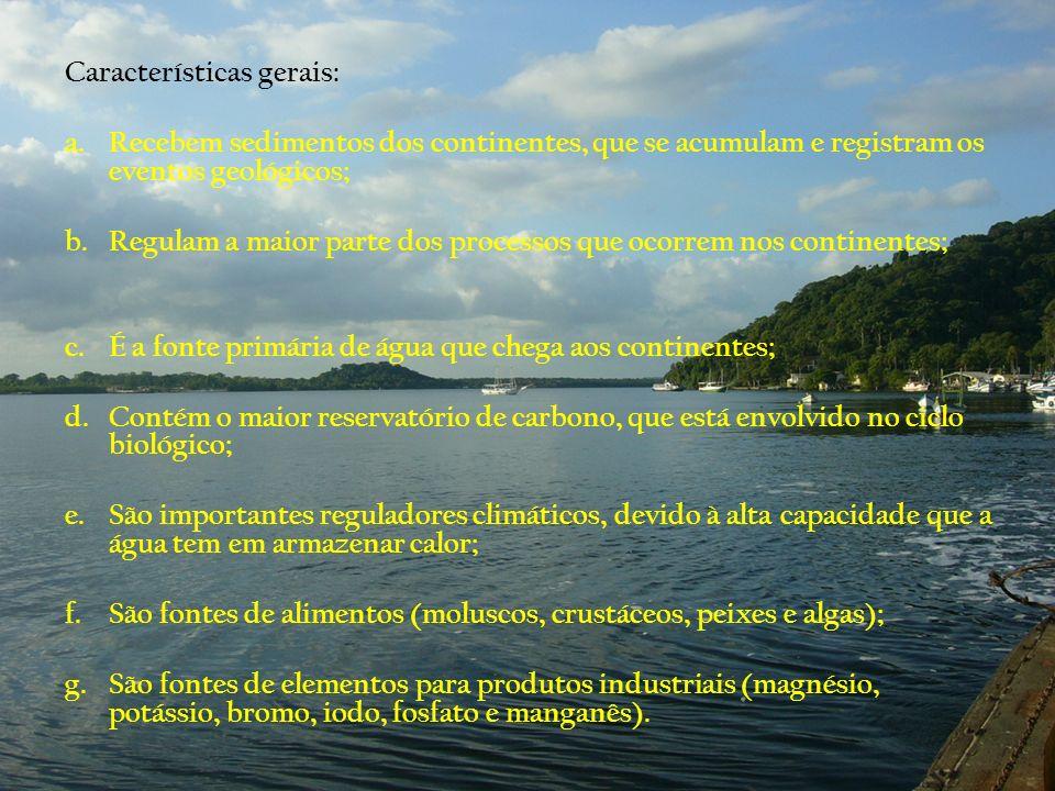 Características gerais: a.Recebem sedimentos dos continentes, que se acumulam e registram os eventos geológicos; b.Regulam a maior parte dos processos