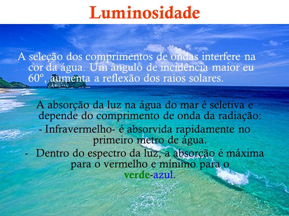 Luminosidade A seleção dos comprimentos de ondas interfere na cor da água. Um ângulo de incidência maior eu 60º, aumenta a reflexão dos raios solares.