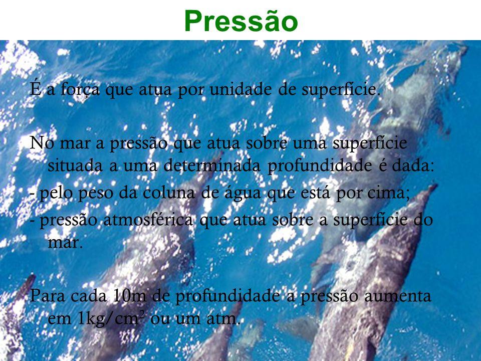 Pressão É a força que atua por unidade de superfície. No mar a pressão que atua sobre uma superfície situada a uma determinada profundidade é dada: -