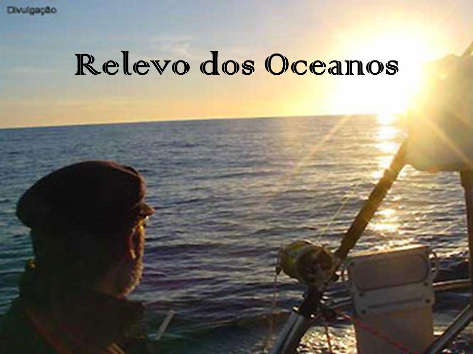 Fossa: depressão do fundo do mar, longa estreita profunda e de vertentes íngremes; Pico submarino: elevação de 1000 metros ou mais sobre o fundo do mar, e de área reduzida em seu cume.