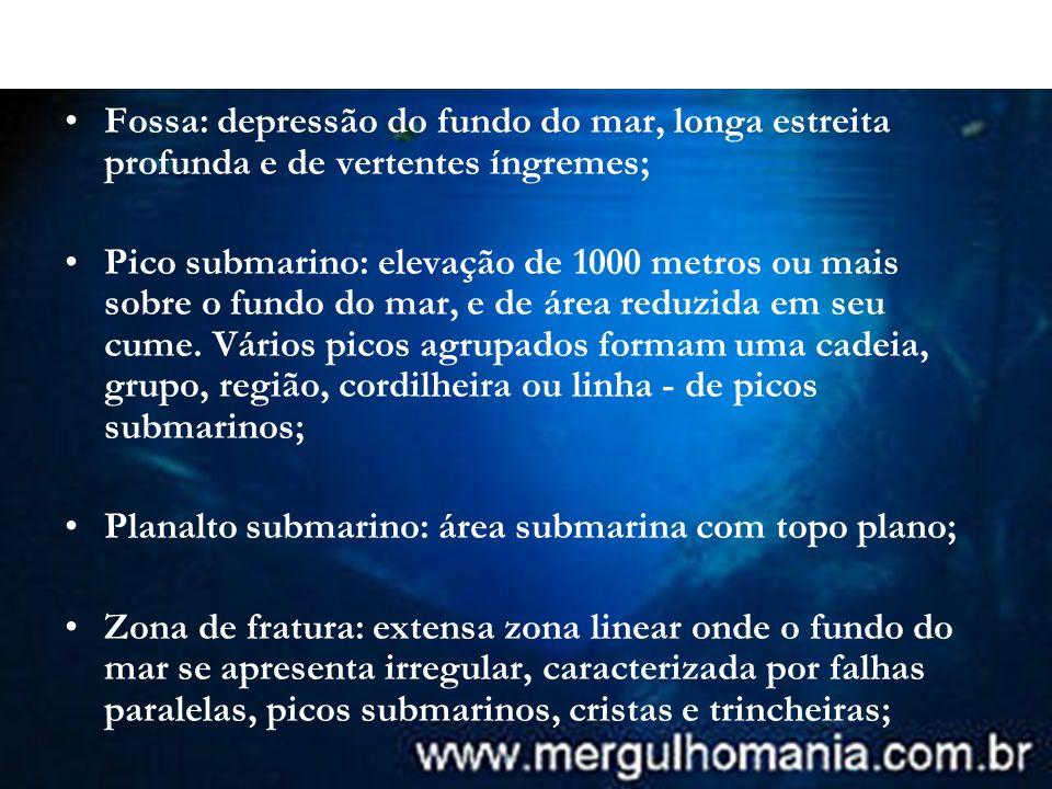 Fossa: depressão do fundo do mar, longa estreita profunda e de vertentes íngremes; Pico submarino: elevação de 1000 metros ou mais sobre o fundo do ma