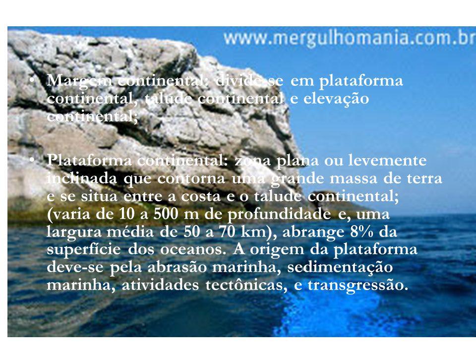 Margem continental: divide-se em plataforma continental, talude continental e elevação continental; Plataforma continental: zona plana ou levemente in