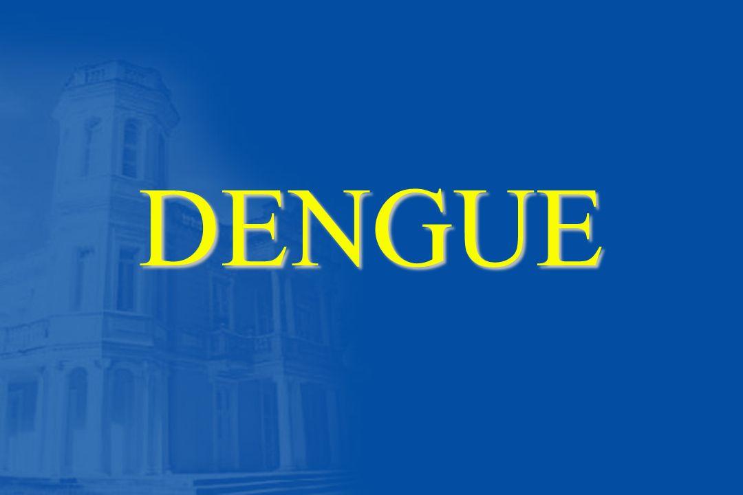 Características Clínicas da Febre do Dengue n Febre n Dor de cabeça n Dor nos músculos e juntas n Náusea/vômito n Exantema n Manifestações hemorrágicas