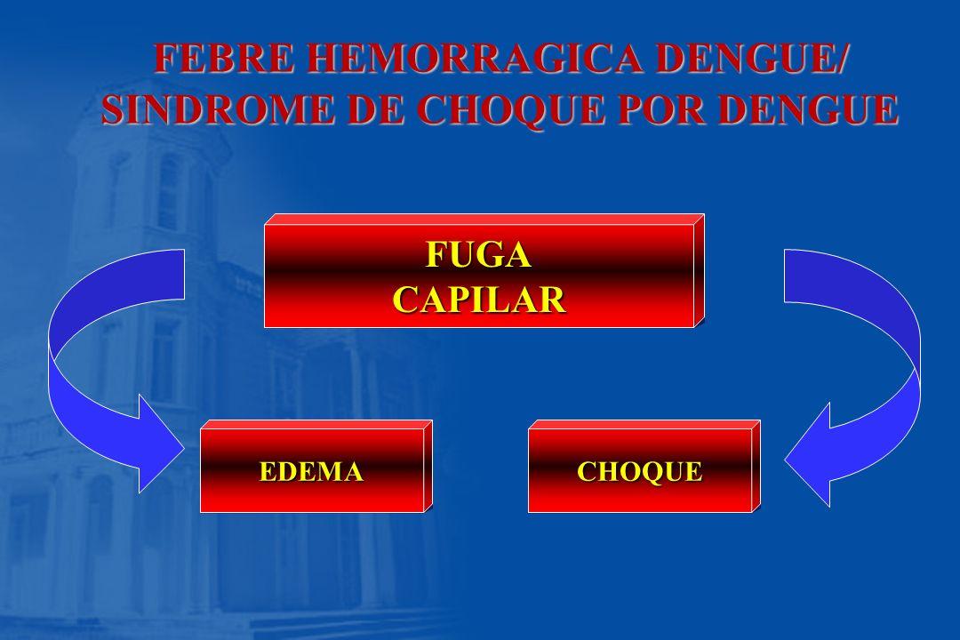 FEBRE HEMORRAGICA DENGUE/ SINDROME DE CHOQUE POR DENGUE FUGACAPILAR EDEMACHOQUE