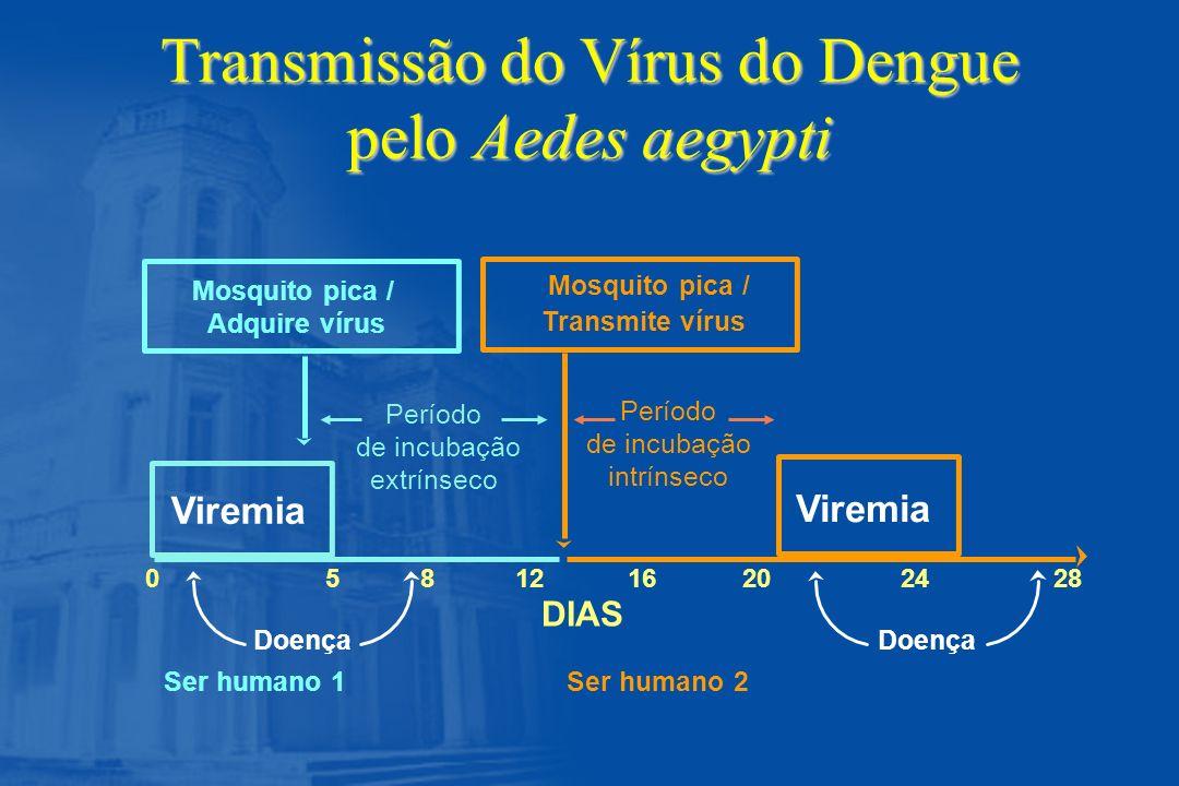 Apresentações Não Usuais de Formas Graves da Febre do Dengue n Miocardiopatia n Insuficiência hepática n Encefalopatia n Hemorragia gastrointestinal severa